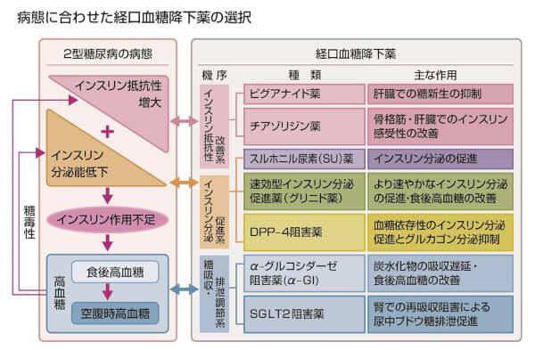 病態に合わせた経口血糖降下薬の選択の説明画像